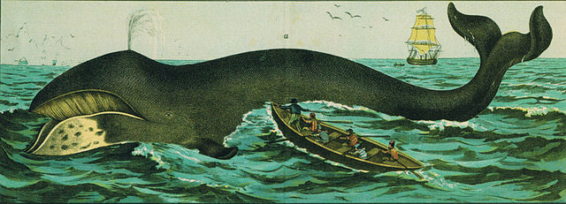 Colonies_Whaling