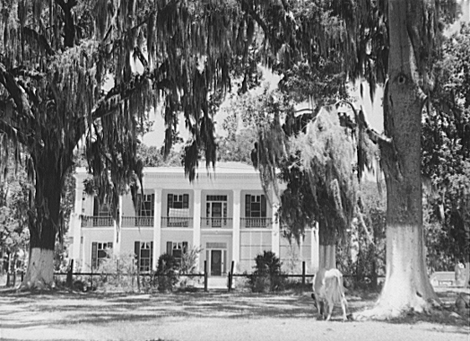 A Southern Plantation Home