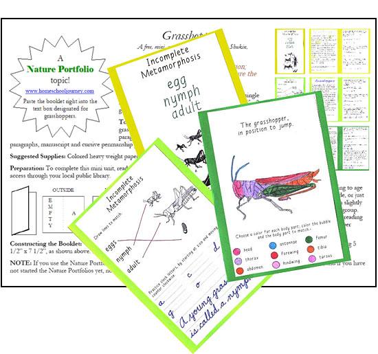 Three Booklets - Three Levels