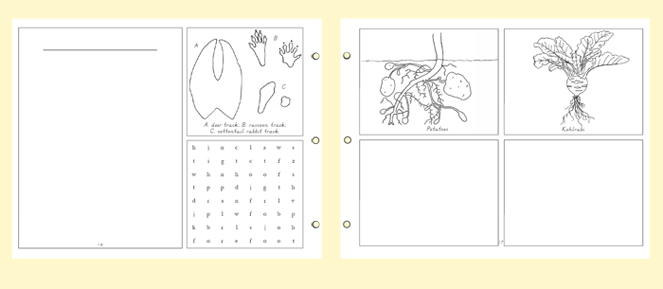 example-Nature-Portfolio-notebooking-pages