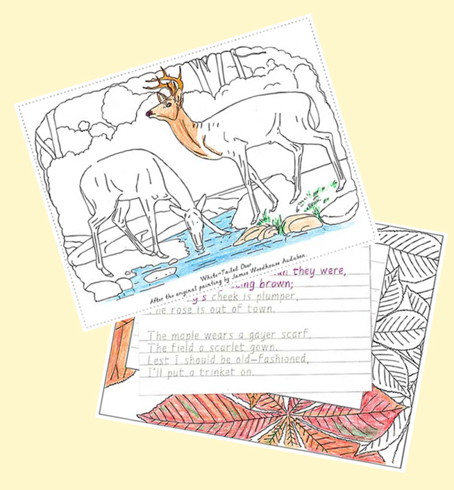 examples-Nature-Portfolio-coloring-poetry