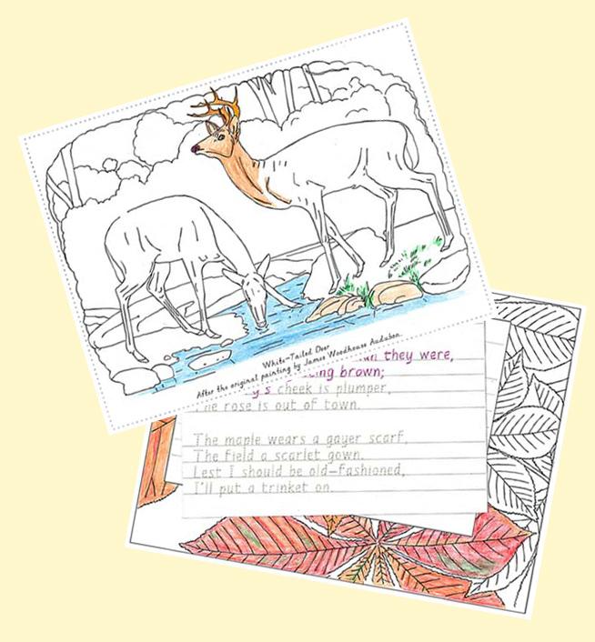 examples-Nature-Portfolio-coloring-poetry